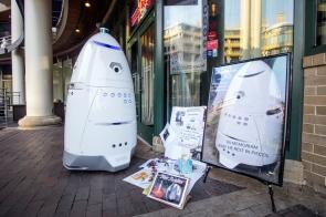 steve-k5-robot-shrine